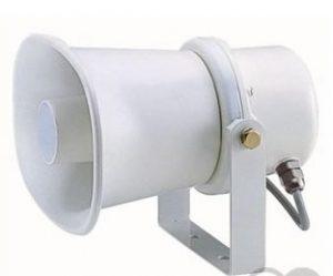 100V_speaker
